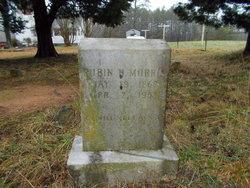 Rubin Henry Morris