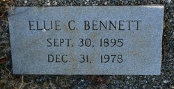 Ellie Jane <i>Chapman</i> Bennett