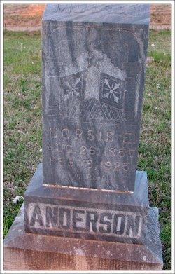 Norsis E Anderson