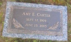 Amy Elizabeth <i>Wiseman</i> Carter