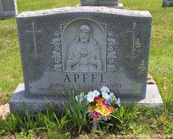 John Apfel