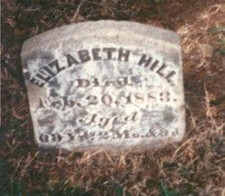 Elizabeth Edwards <i>Anderson</i> Hill