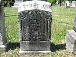 Alice Clarinda <i>Leavenworth</i> Grattan