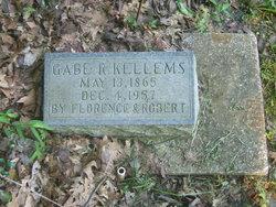 Gabe R Kellems