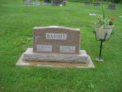 Mary Jeanne <i>Nei</i> Banidt