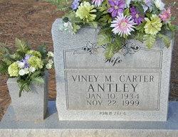 Viney M <i>Carter</i> Antley