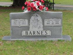 James Gatlin Barnes