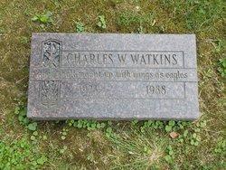 Rev Charles W. Watkins