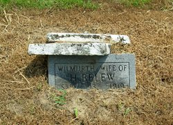 Wilmouth <i>Murphy</i> Belew