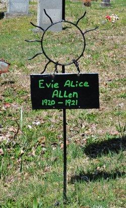Evie Alice Allen