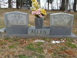 Ilar Mae <i>Maynor</i> Allen