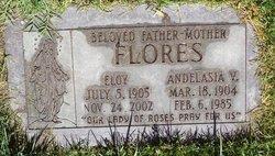 Andelasia V Flores