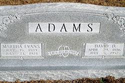 David D Adams