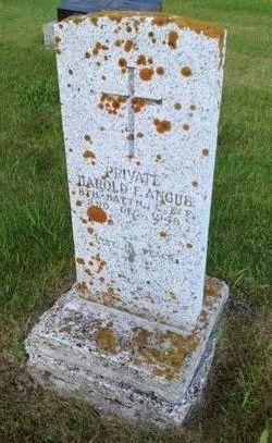 Harold Francis Harry Angus