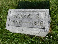Albert S Finks
