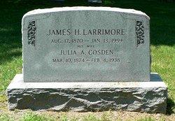 Julia Anne <i>Cosden</i> Larrimore
