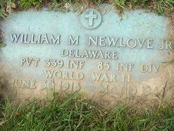 Pvt William Morton Newlove, Jr