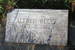 Alfred Beltz