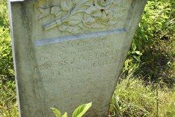 Agnes Jane <i>Logan</i> Bartee