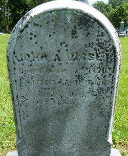 John Allem Bissey