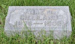Anna L. Gilliland