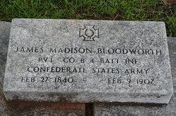 James Madison Bloodworth