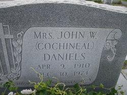 Cochineal <i>Hadden</i> Daniels