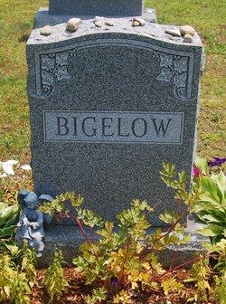 Alan Arthur Bigelow