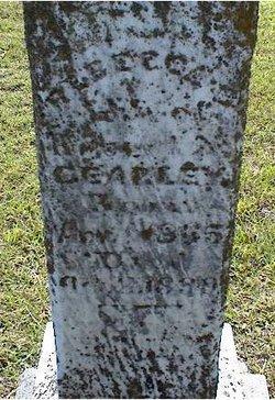 Rebecca J <i>Davis</i> Cearley