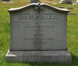 Joanna D. <i>Williams</i> Dempster