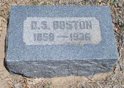 D. Solomon Boston