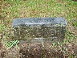 Andrew Jackson Dyer