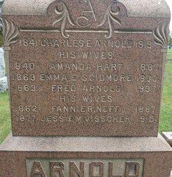 Charles E. Arnold
