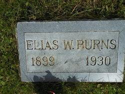 Elias William Burns