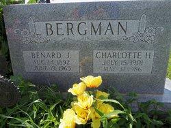Benard Jacob Ben Bergman