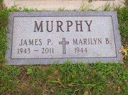 James P Murphy