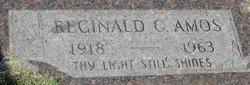 Reginald C Amos