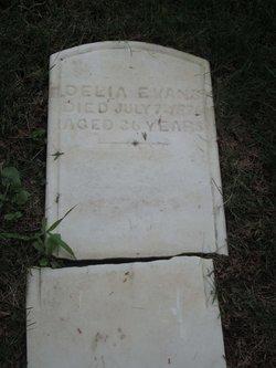 Delia Evans
