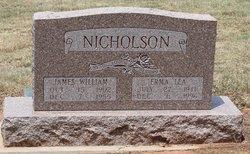 James William Nicholson