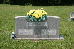 James Noel Carroll
