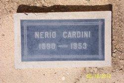 Nerio Cardini