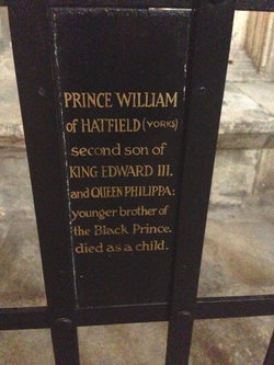 Prince William Of Hatfield