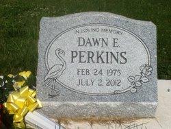 Dawn Elizabeth Lizzy <i>Farrington</i> Perkins