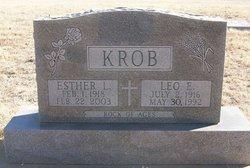 Leo E Krob