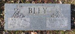 Walter H. Bley