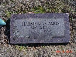 Sarah Hassie Mae <i>Jameson</i> Amos