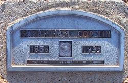 Sarah Samantha <i>Hamilton</i> Copelin