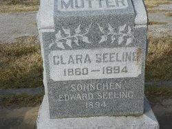 Edward Seeling