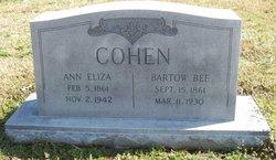Annie Eliza <i>Windham</i> Cohen