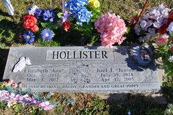 Elizabeth Ann <i>Beatty</i> Hollister